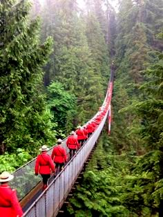 More than 100 Mounties walking onto the Capilano Suspension Bridge prior to taking the historic photo. Canada 150Suspension by https://s-media-cache-ak0.pinimg.com/236x/e6/3e/ca/e63eca122e9bd04a4824b17d9310be33.jpg