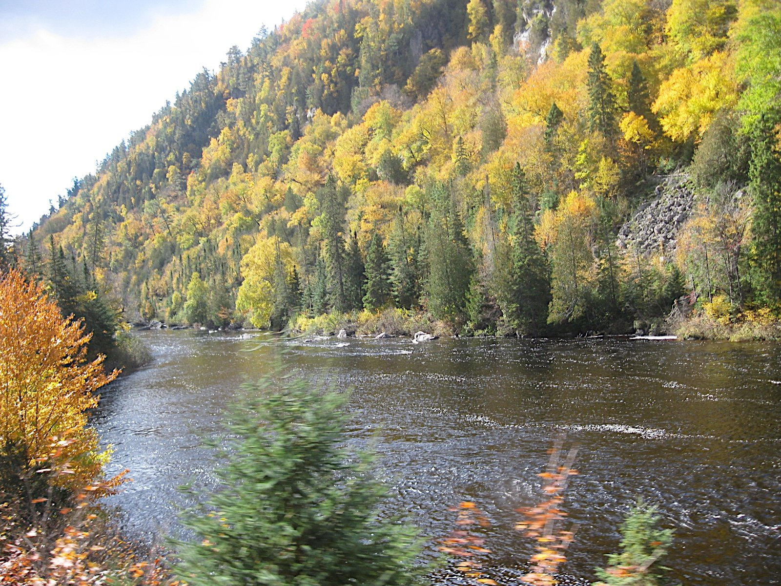 Agawa Canyon Scenic View Google image from picasaweb.google.com