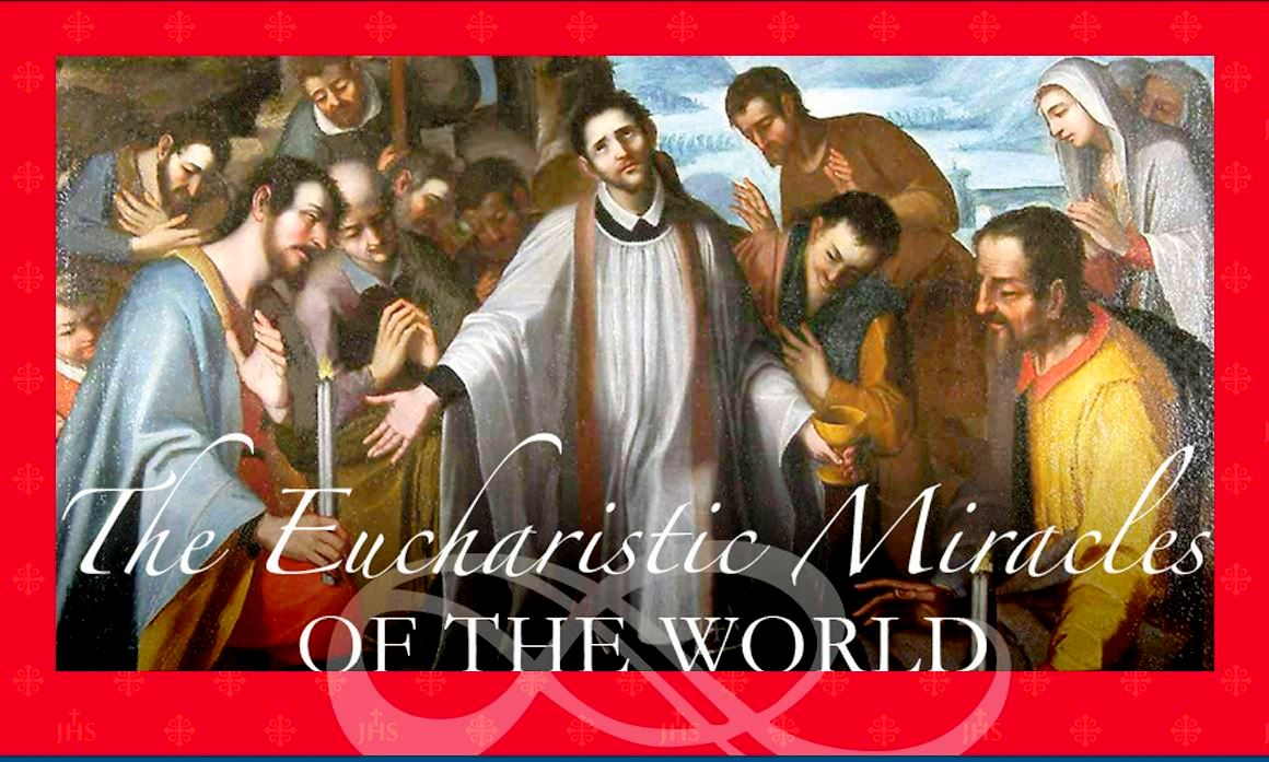 The Eucharistic Miracles of the World Google image from http://www.miracolieucaristici.org/