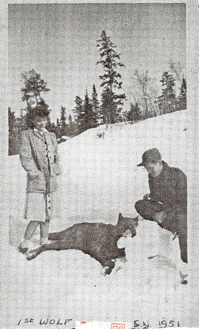 First Wolf Sioux Narrows 1951