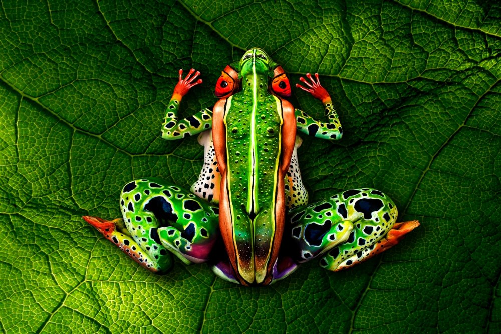 Frog by Johannes Stoetter Google image from http://www.johannesstoetterart.com/art-print-products-bodypainting.html