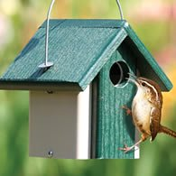 Birdhouse Google image from http://www.duncraft.com/common/images/products/thumb/3100new_195.jpg