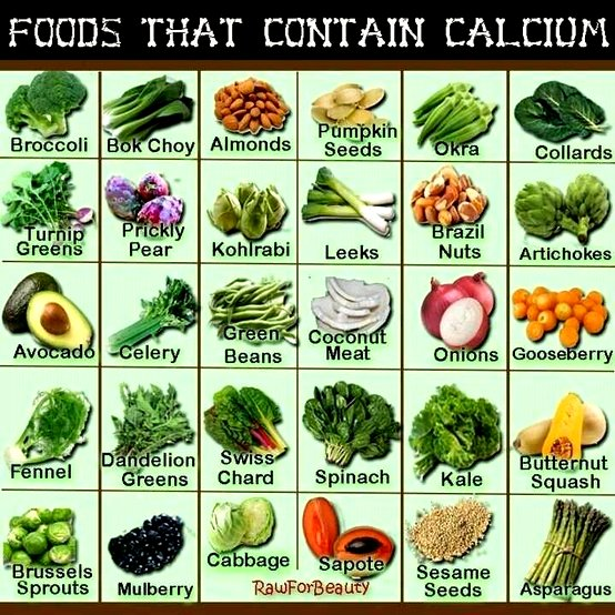 Foods That Contain Calcium Google image from http://plantbaseddietitian.com/wp-content/uploads/2010/11/calcium-foods.jpg