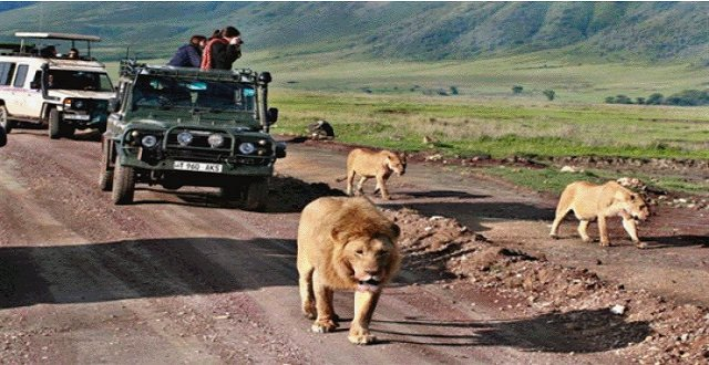 East Africa Travel Company