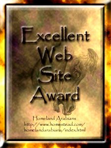 Excellent Web Site Award Gold