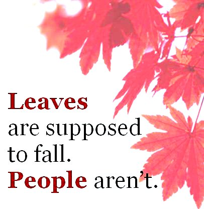 Leaves are supposed to fall, people aren't Google image from https://www.aging.ohio.gov/img/Falls2011_logo.JPG
