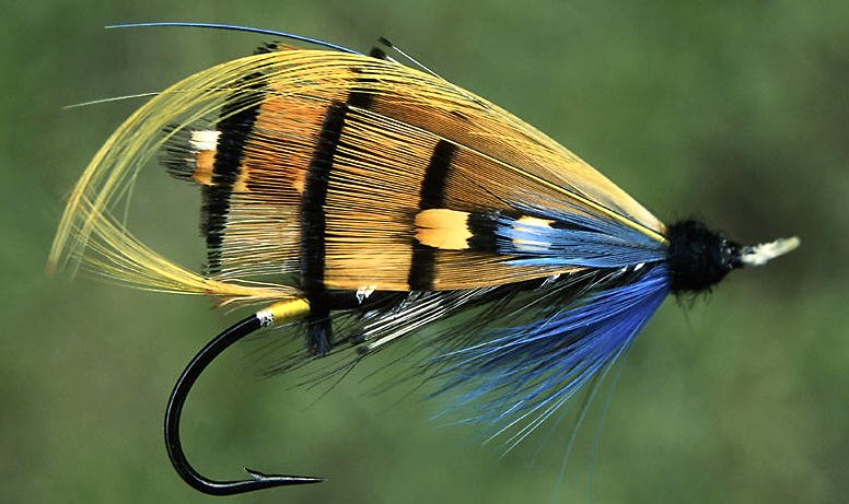 Fly Tying Google image from http://www.flytying.ca/images/fishing%20fly.jpg
