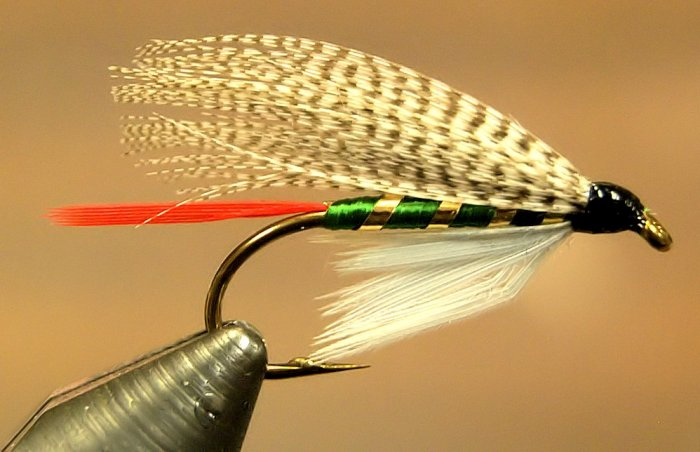 Fly Tying Google image from http://www.flymasters.com/dressedirons/wp-content/uploads/image/Large%20Images/GrizzlyKing-lrg1024.jpg