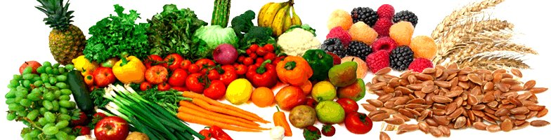 Fruits, Grains and Vegetables Google image from http://www.babyboomerfitnessusa.com/images/antioxident.food.gif