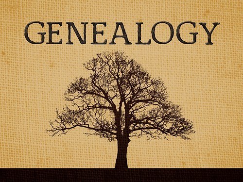 Genealogy Google image from http://richardellisprestonjr.com/wp-content/uploads/2013/11/Genealogy-Tree.jpg