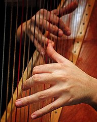 Harpist Hands Google image from http://farm4.static.flickr.com/3514/3239087070_2055daa793_m.jpg