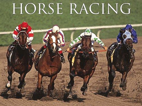 Horse Racing Google image from http://horseracing.fm/wp-content/uploads/aes/horseracingFM_645.jpg