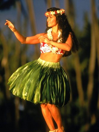 Hawaiian Hula Dancer Google image from http://whileyouwereblogging.com/wp-content/uploads/2013/10/hawaiian-hula-dancer.jpg