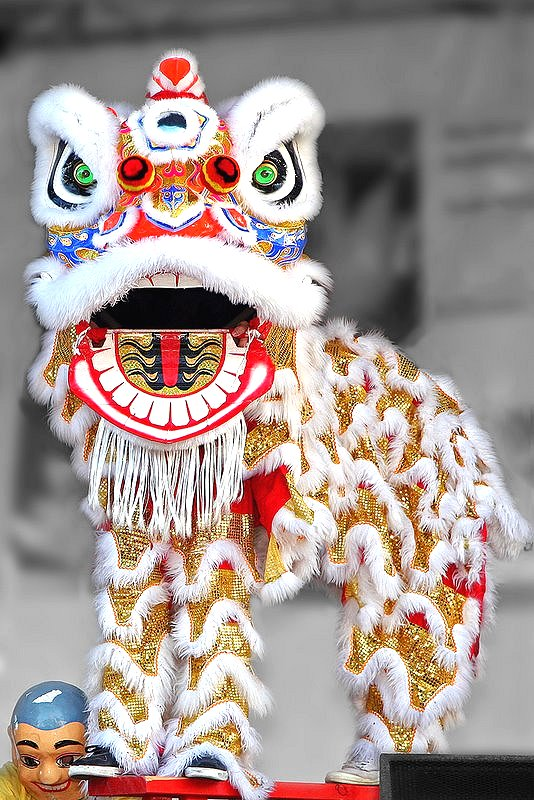 Chinese Lion Dance Google image from http://chinablog.cc/wp-content/gallery/art/dragon_lion_dance/lion_dance_2.jpg