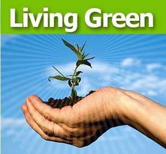 Living Green Google image from http://images.wikia.com/green/images/7/74/Green_living.jpg