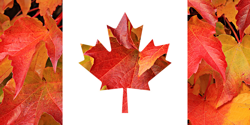 Maple Leaf Flag image from VIVAbuzz email 30Jun2017