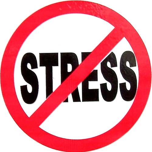 No Stress Google image from http://oldscollege.ca/wpstudentblog/wp-content/uploads/2011/11/no-stress.jpg