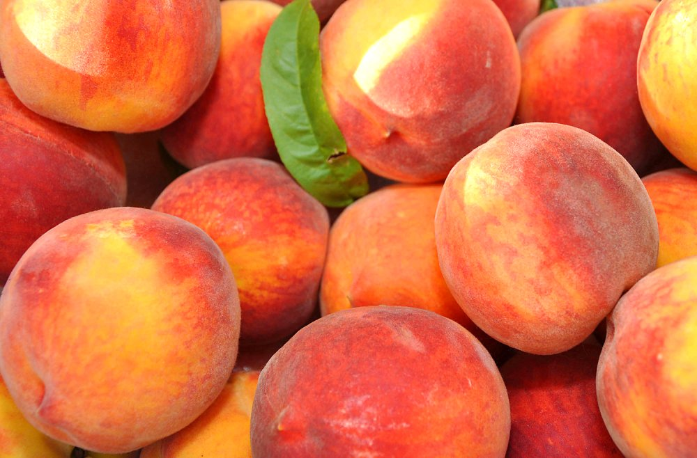 Peaches Google image from http://www.lexingtoncountypeachfestival.com/