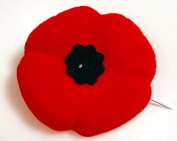 Poppy Google image from http://www.careeredge.ca/ceoblog/wp-content/uploads/2010/11/poppy.jpg