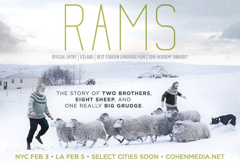 Rams (2015) Movie Poster Google image from http://www.icelandnaturally.com/sites/icelandnaturally.is/files/styles/article_730x490/public/thumbnails/image/rams_poster.jpeg/