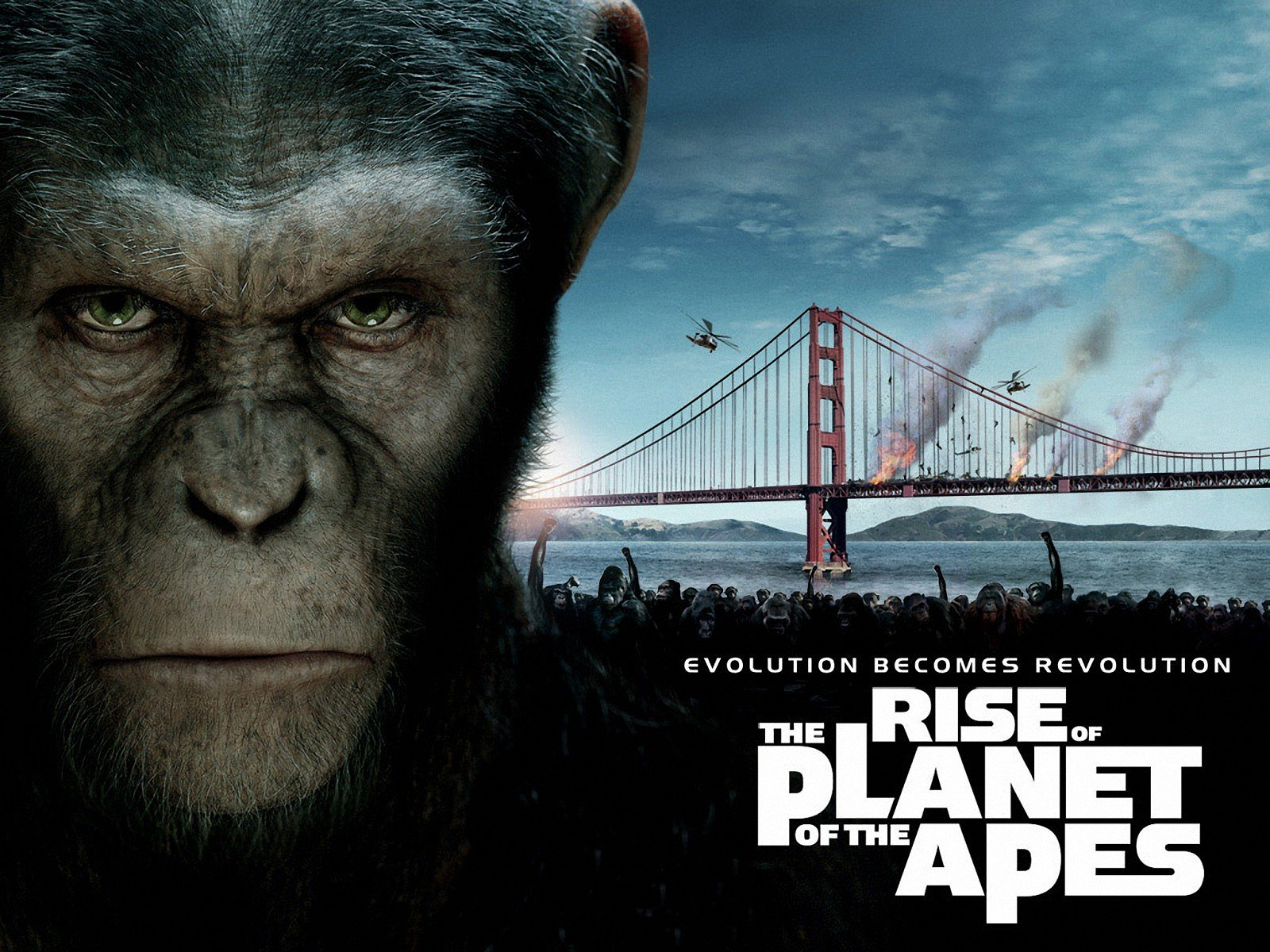 Rise of the Planet of the Apes Google image from http://www.dvd-ppt-slideshow.com/blog/wp-content/uploads/2011/08/rise-of-planet-of-the-apes-4.jpg