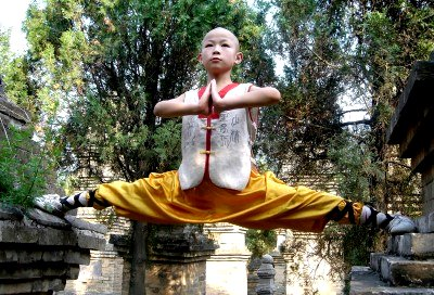 Shaolin Kung Fu Google image from http://english.peopledaily.com.cn/200503/12/images/shaolin5.jpg