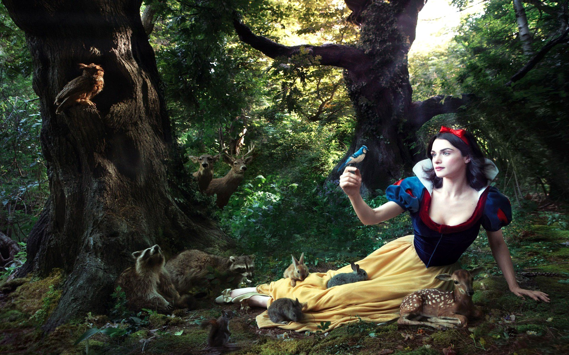 Snow White Wallpaper Google image from onlyhdwallpapers.com