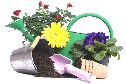 Gardening Google image from http://www.gardening-tools.us/gardening-equipment-408.jpg