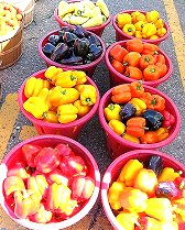St. Jacobs Farmers Market Google image from http://farm4.static.flickr.com/3141/2834294908_18993910c1.jpg?v=0