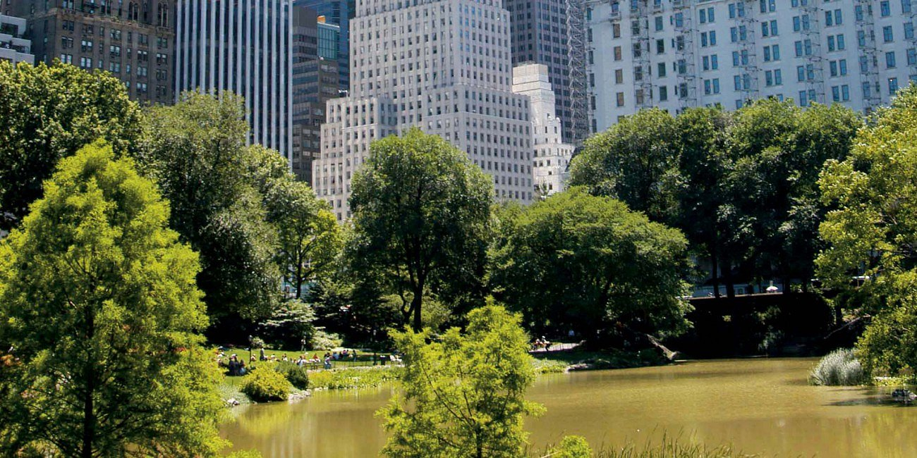 Urban Green New York Central Park Google image from http://www.urbangreenbluegrids.com/uploads/New-York-Central-Park-Maria-Isabel-Villamonte-Dreamstime-com2-1300x650.jpg