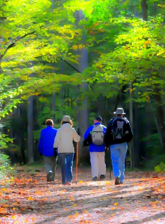 Social Walking Group for People in Grief Google image from https://www.canadahelps.org/en/charities/heart-house-hospice-hospice-of-peel-inc/events/walk/